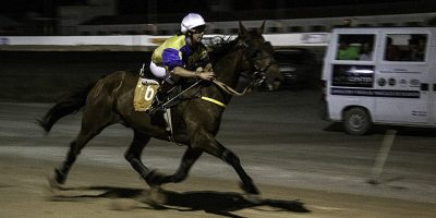 8 nocturna-22-6-16 (Trot Montat)