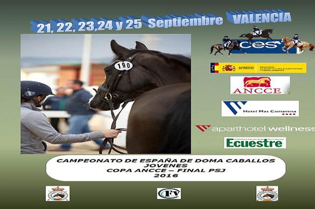 cartel-campeonato-de-espana-de-caballos-jovenes