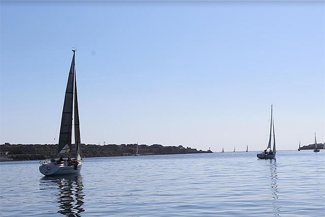 Regata Promoción Cruceros