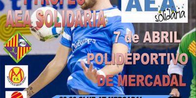 Cartell FS Solidario