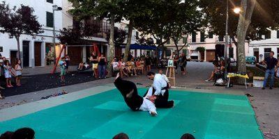 9a Exhibició d'Aikido de Sant Llorenç 2017