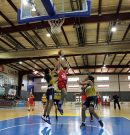Més de 700 fillets i filletes han participat aquest cap de setmana a sa Copa AON de bàsquet