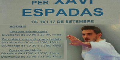 cartel karate -Xavi Espadas