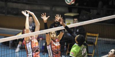 avarca volei-logro–osuperliga femenina de voleibol