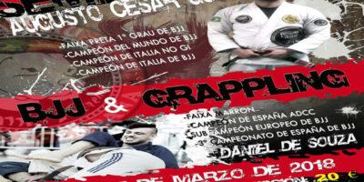 Cartel Seminari Brazilian jiu-jitsu y grappling