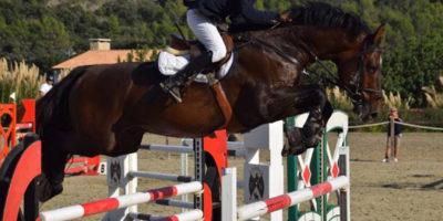 Agustí Sastre-Gran Premio del Concurso de Saltos Nacional Ciutat d' Alaior