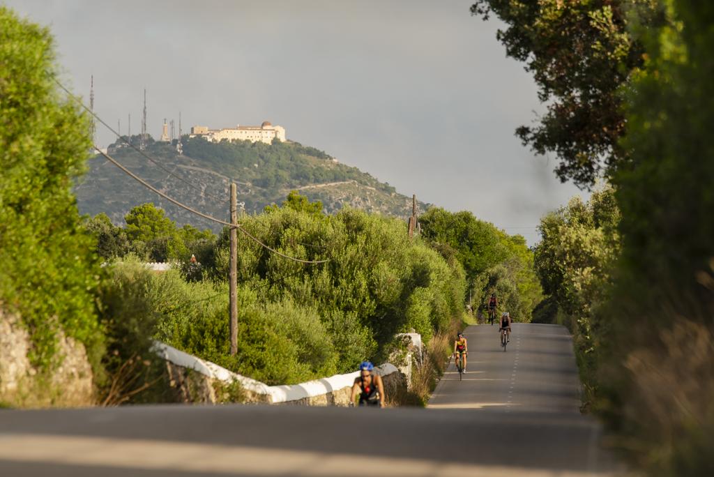 Half Artiem Menorca