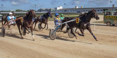 Carreras Cavalls 11-11-18