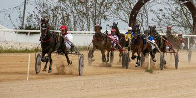 Carreras caballos mao 28-04-19