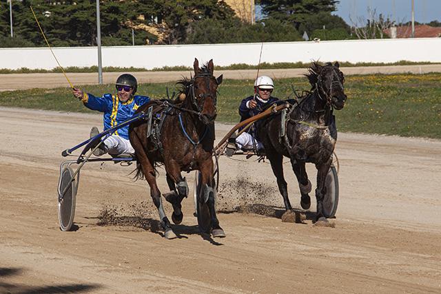 Carreras caballos mao 29-12-19 -Bella de Kor i Vent de Thoury