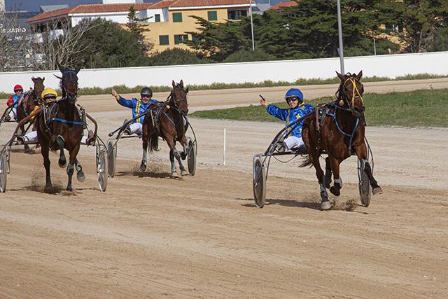 Carreras Cavalls mao 12-1-20