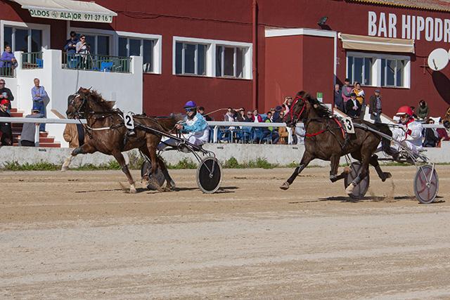 Carreras Trot Maó- 2-2-20