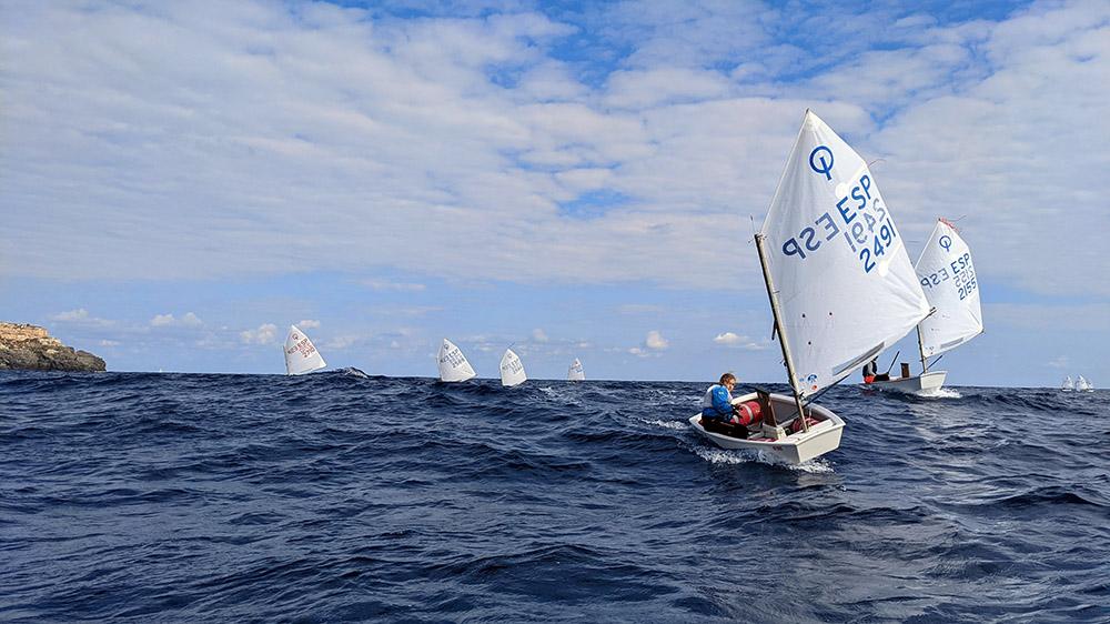 Optimist en regata